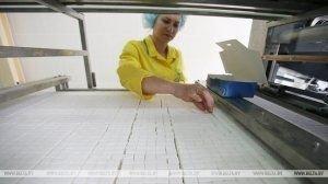 Александр Лукашенко собрал совещание по актуальным вопросам развития пищевой промышленности